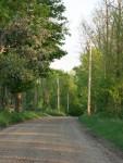 Town Hill Road - Goshen