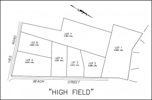 High Field Map