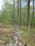 Stone wall at property line
